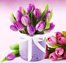 פרחיטוליפ-משלוחיפרחיםבתים